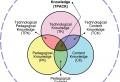 TPACK-Wissendimensionen